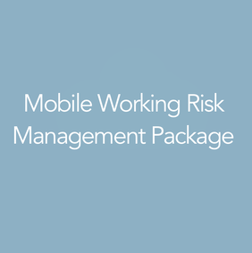 Mobile Working Risk Management System